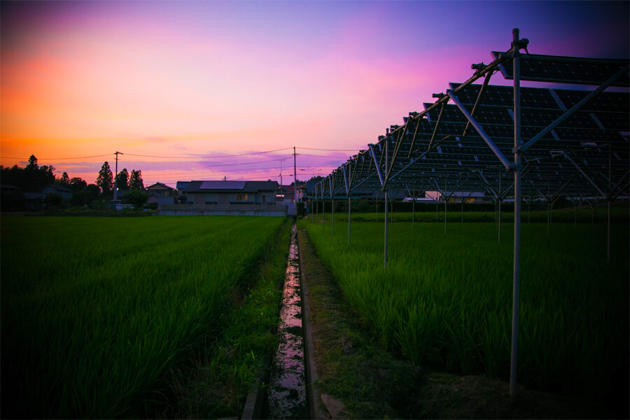 茜色に染まる夕日。一日恵みの電力をありがとう!