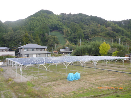 ソーラーシェアリング導入事例