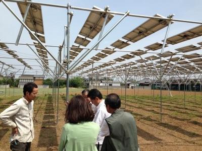 農業と太陽光発電